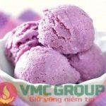 HƯƠNG LIỆU VMC